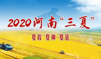 """2020河南""""三夏"""""""