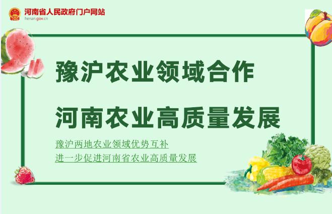图解:促进河南农业高质量发展 深化豫沪农业领域合作