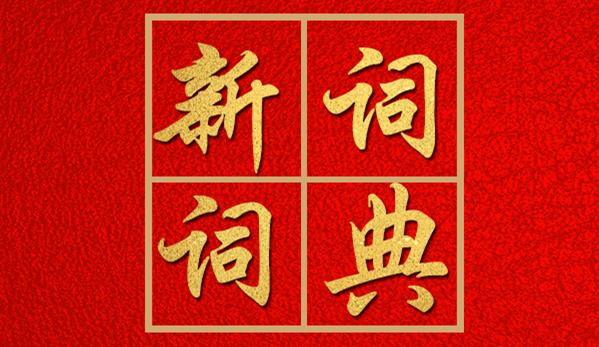 2021河南两会政府工作报告新词词典